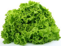 salata-zelena