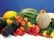ishrana i veremenske prilike