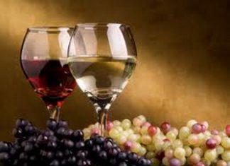 vino_i_grodje