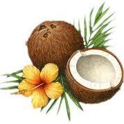 kokosovo_ulje