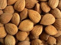 sjemenke-kajsije