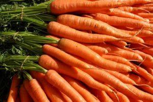 Važnost šargarepe u našoj ishrani